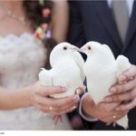 two-white-doves-wedding-popovich22-1