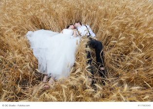 Just married bride and groom lying in a wheat field. Love story and wedding photography