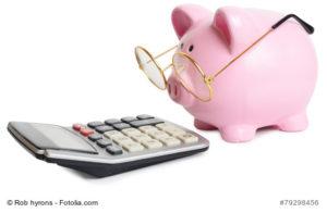 Das Budget zur Hochzeit kalkulieren und das Sparschein im Blick - Bild: Rob hyrons - fotolia.com